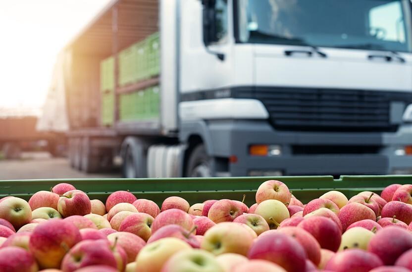 Halten Sie Ihr Obst und Gemüse mit der richtigen Logistikverpackung frisch